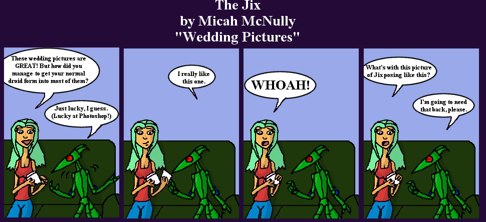 101. Wedding Pictures